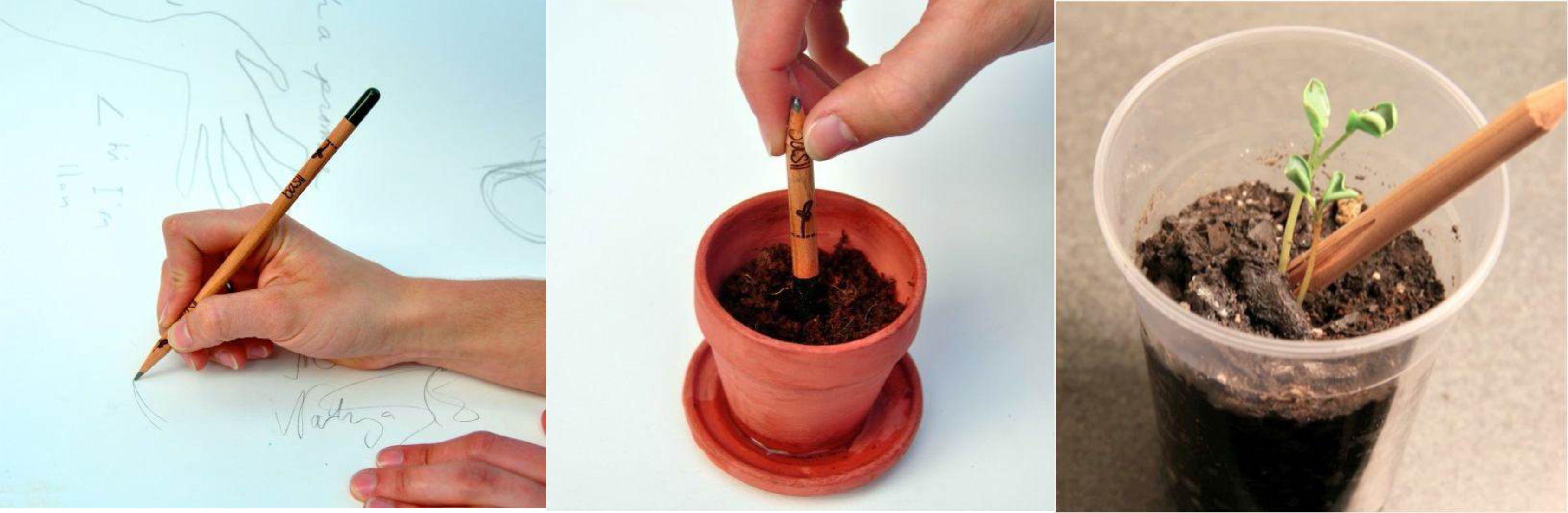 Kikelő ceruza - újrahasznosítható ceruza másképp